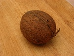 Cocos nucifera